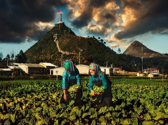 Lũng Cú - Cảnh đẹp trên đỉnh Long Sơn hùng vĩ