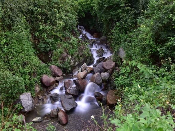Sơn Trà - Bán đảo độc nhất vô nhị ở Việt Nam