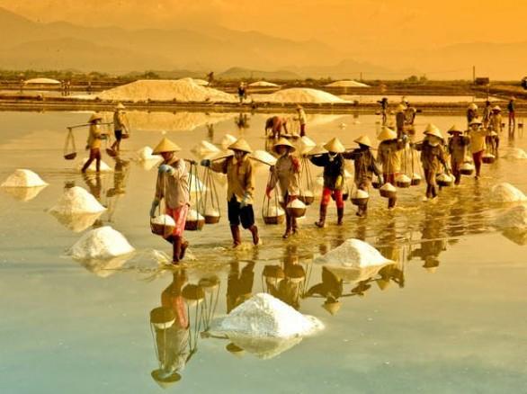 Bình dị đồng muối Sa Huỳnh