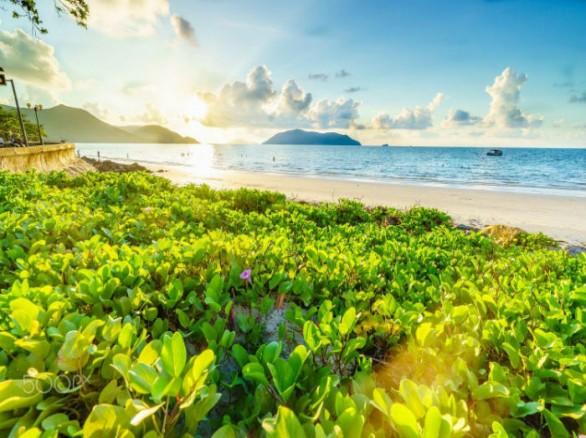 Côn Đảo: Thiên đường vươn mình từ địa ngục