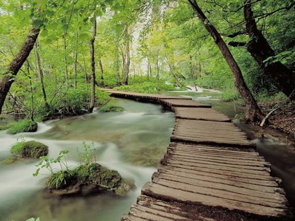 Điểm đến tham quan - Vườn quốc gia Ba Vì