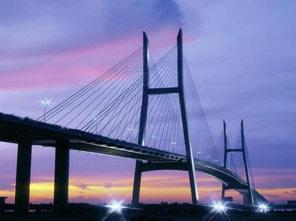 Cầu Mỹ Thuận lung linh trong đêm
