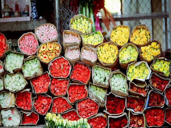 Ghé chợ hoa Hồ Thị Kỷ