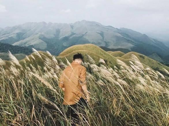 Thơ mộng cánh đồng lau trắng ngợp Bình Liêu