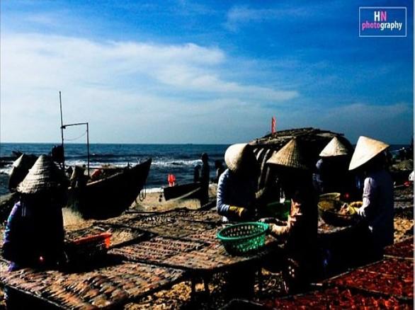Làng chài cá trích Phú Quốc
