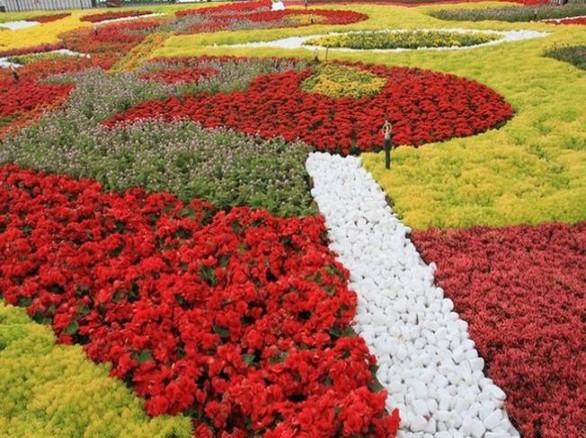 Vườn hoa Đà Nẵng