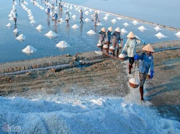 Cánh đồng muối lớn Hòn Khói