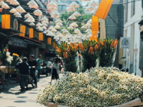 Phố cổ trong ngày di sản văn hóa Việt Nam
