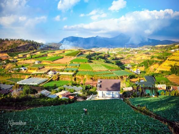 Trại Mát - địa điểm du lịch dành cho người yêu thiên nhiên