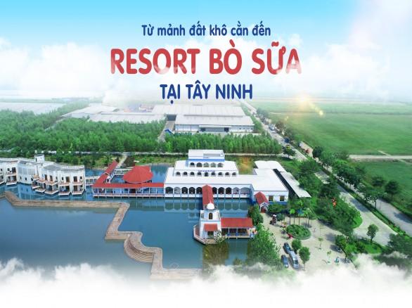 Mê mẩn Resort Bò sữa tại Tây Ninh